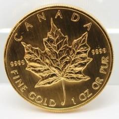 メイプル金貨の見方