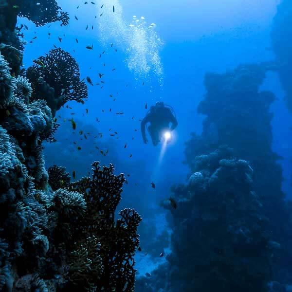 海水の中に金が50億トン存在する!